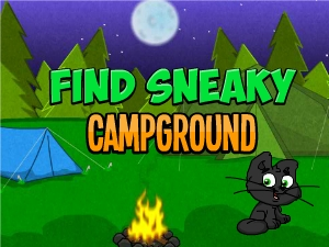 Find Sneaky Campground