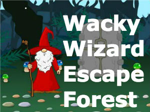 Wacky Wizard Escape Forest