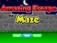 Amazing Escape Maze