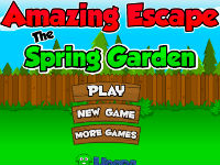 Amazing Escape Spring Garden