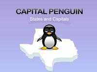 Capital Penguin