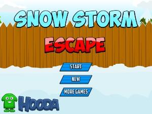 Snow Storm Escape